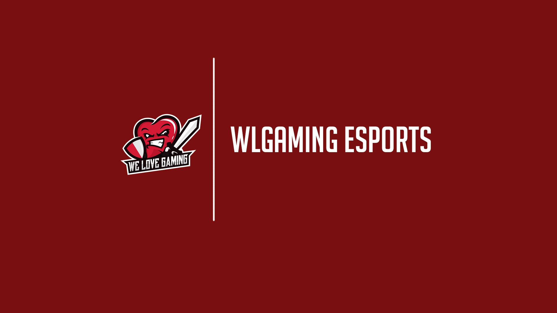 WLG PUBG Team - Η Πορεία τους μέχρι τώρα